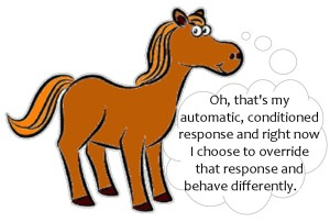 horse cartoon-0
